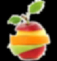 shutterstock_85936339_ganzklein_Customiz