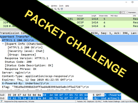 Packet Challenge: Look it Up in the Dictionary [100119]
