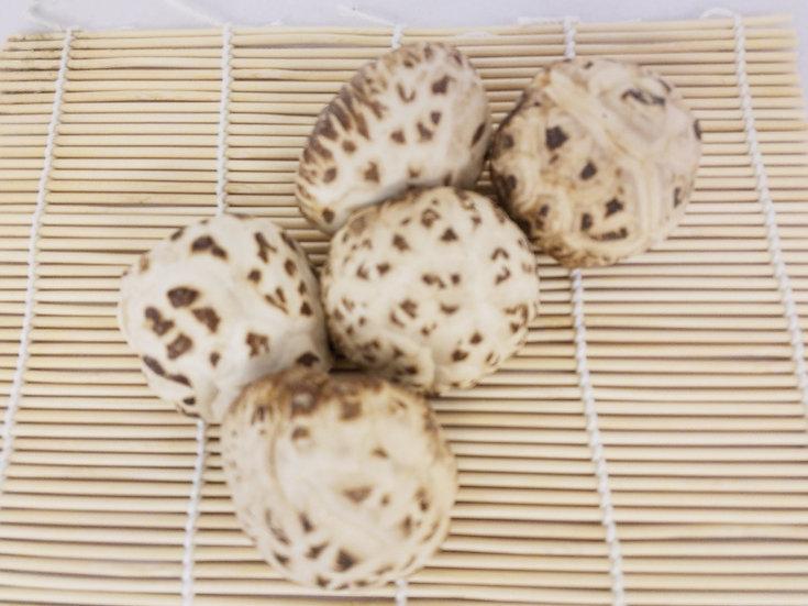 天白花菇 Dried Mushroom 4-5CM