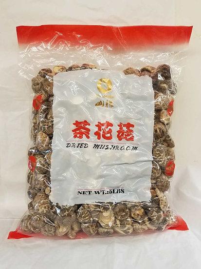 茶花菇 Tea Flower Mushroom 5 LB