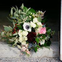 Douglas Wedding Douglas Wedding 45420155