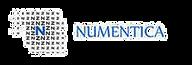Numentica LLC_edited.png