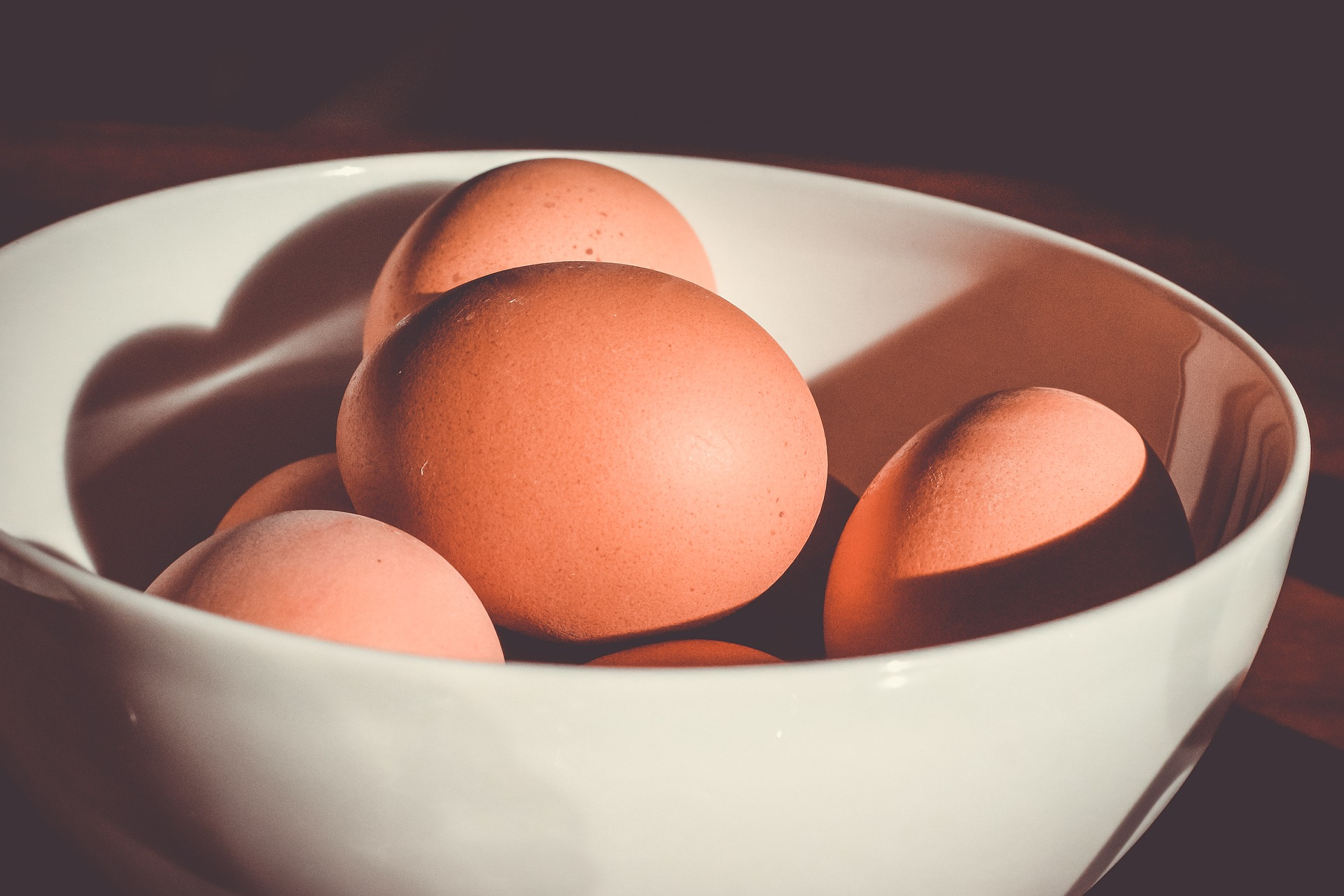 Cracking Eggs - The Fountains Federation 4