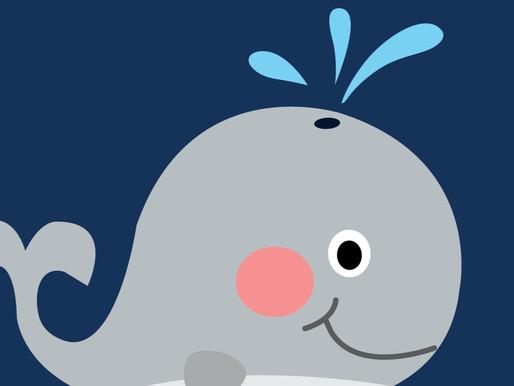 Whales November 2019 Blog Update