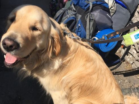 Cracker joins the Duke of Edinburgh Silver Practise Expedition
