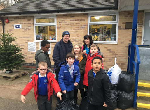Eco Committee: Spring Term 1 Update