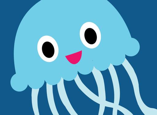 Jellyfish Summer 2019 Blog Update