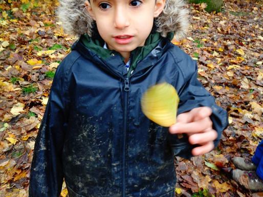 Forest School Blog 15.11.19