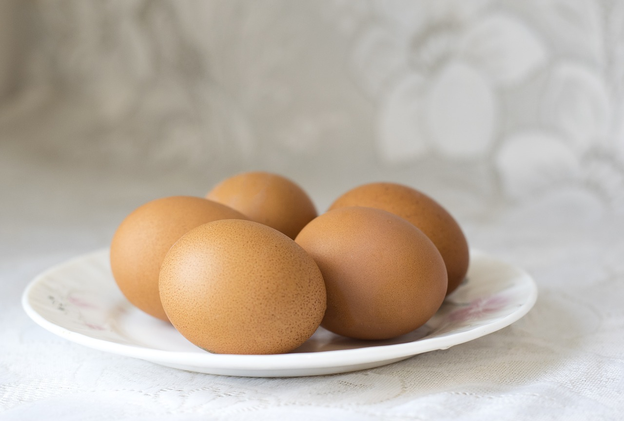 Cracking Eggs - The Fountains Federation 7