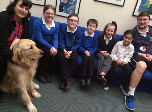 Cracker joins School Council