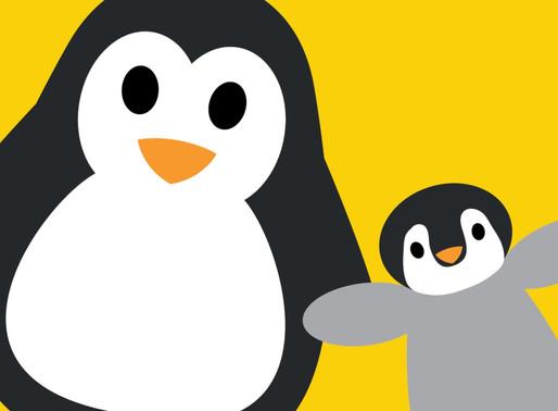 Penguins Blog - Autumn 2017