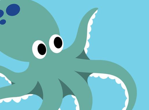 Octopus January 2020 Blog Update
