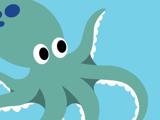 Octopus Class Update: Spring 2021