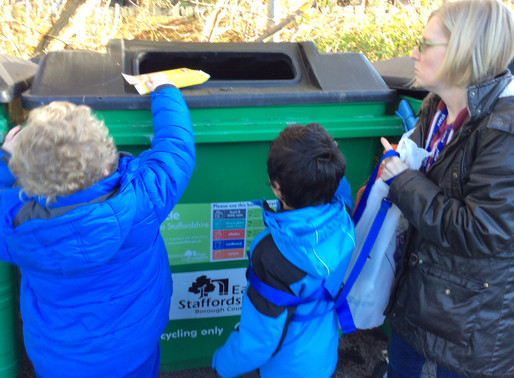 Eco Committee clean up the school