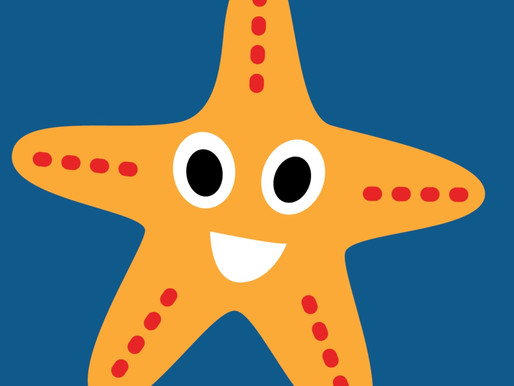 Starfish - January Update 2019