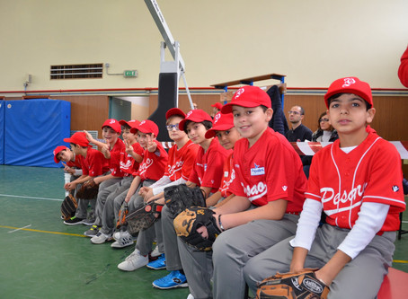 Week-end intenso per le giovanili del BASEBALL PESARO
