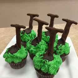 Ground Breaking Cupcakes