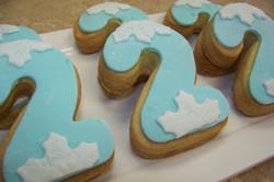 Frozen Number 2 Cookies