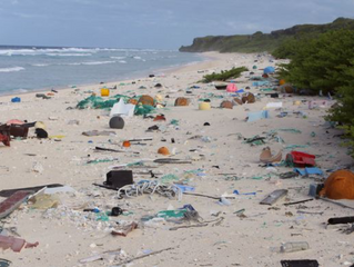 Solution to Plastic: A scourge to Humanity