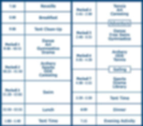 Activity schedule, Typical Day