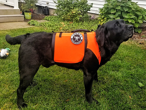 IIIA DOG SHIRT - Dual Threat Vest