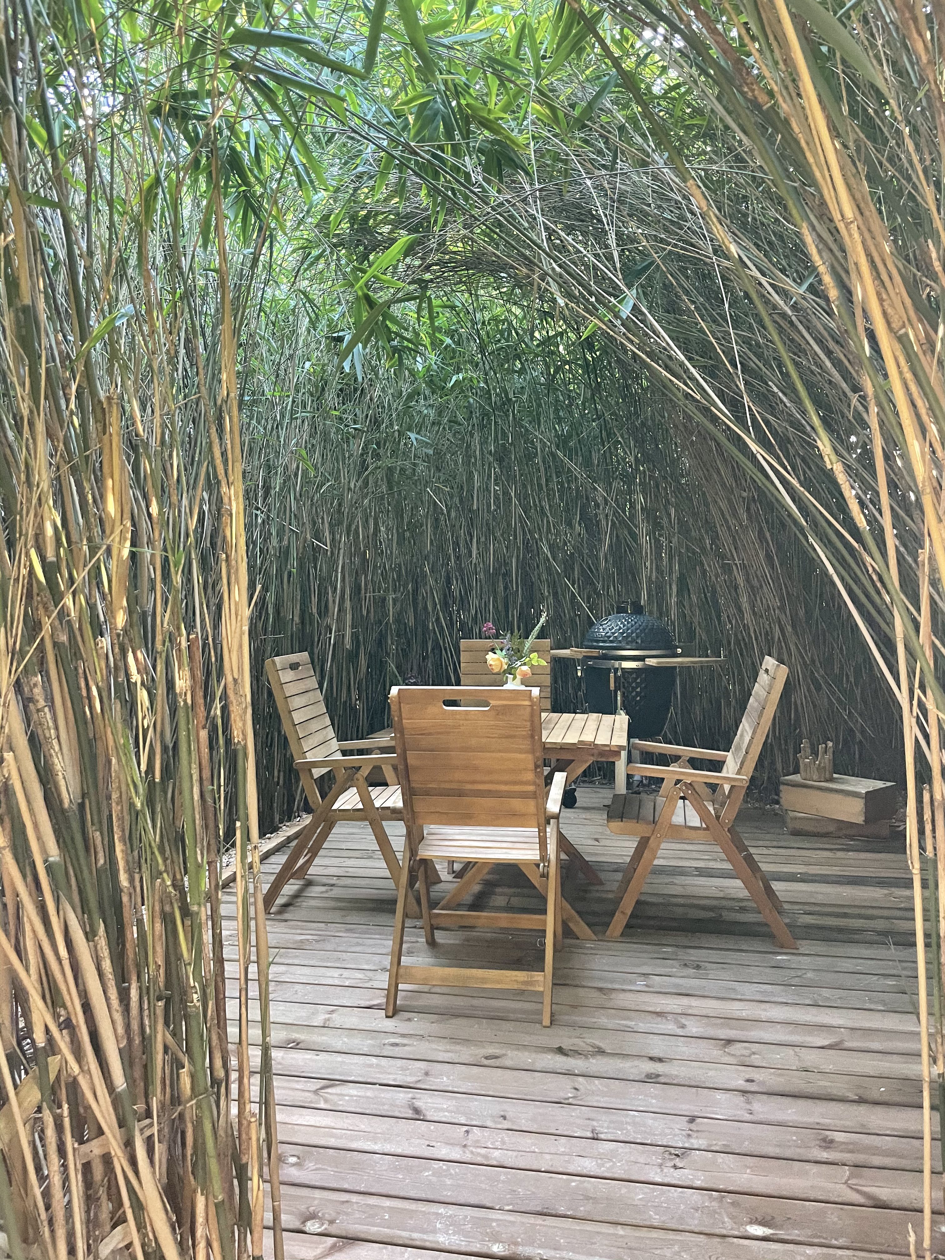 Bamboo Chill // 2h30