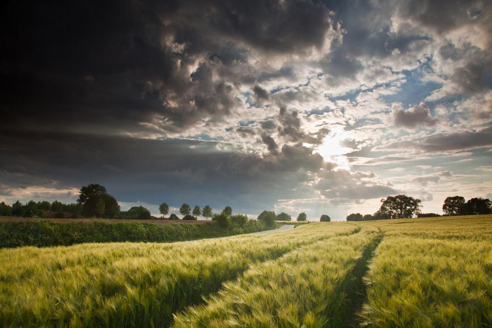 Vlaamse-Ardennen5_bart_Heireweghe