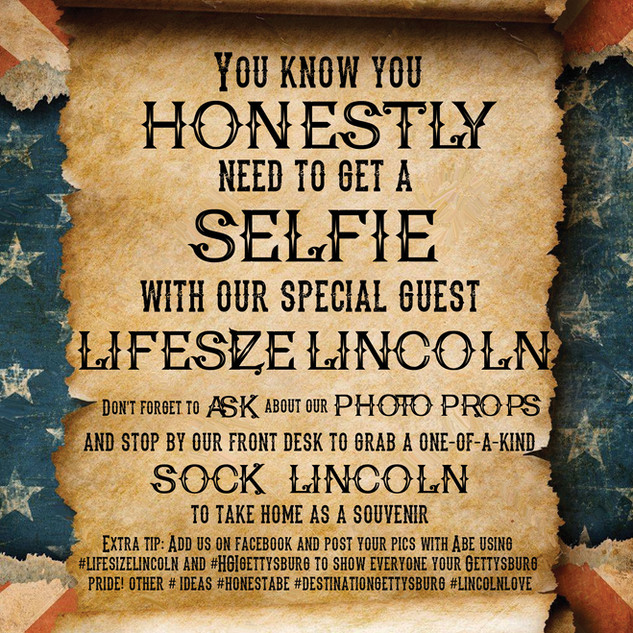 Lincoln Selfie Poster