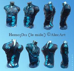 Hemo3D12 (LeMâle)...