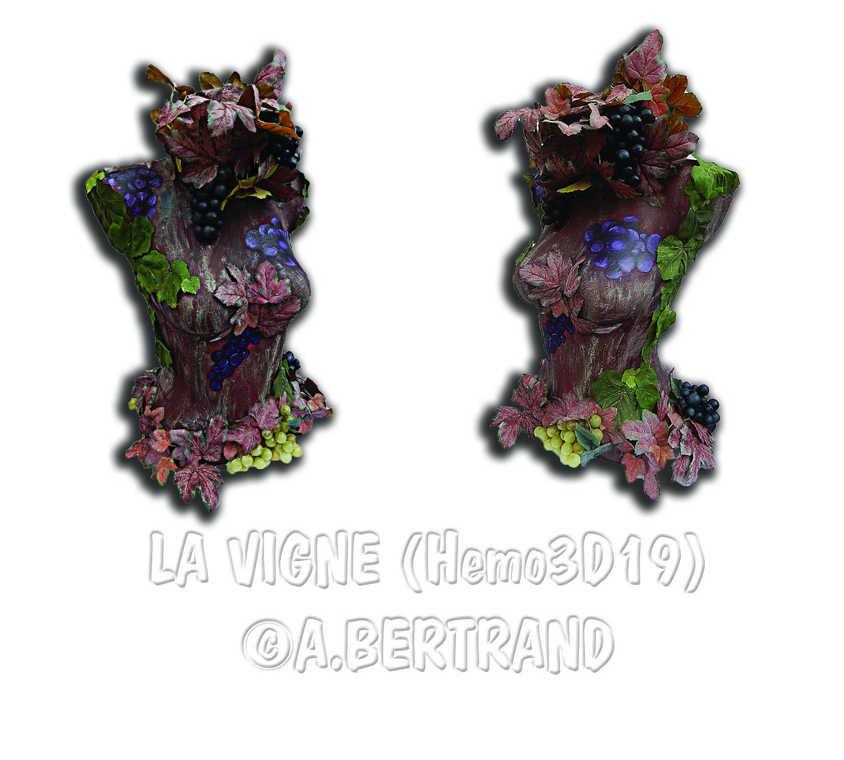 Hemo 3D19 - LaVigne...