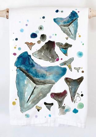 sharkteeth.jpg