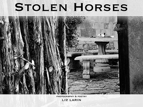Liz Larin Poems - Stolen Horses