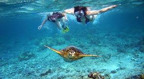 snorkeling Santa Teresa