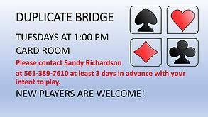 DUPLICATE BRIDGE replacement.jpg