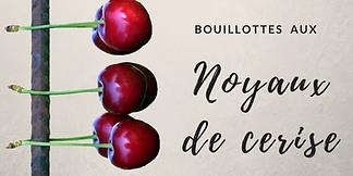 Bouillotte-noyau-cerise.png