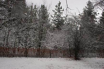 Avenue-snow.png