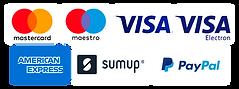 Loghi carte di credito.png