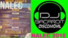 NALEC 2018.jpg