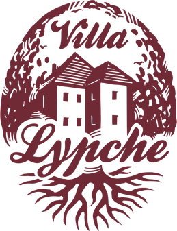 lypche-etiketa-krivky.png
