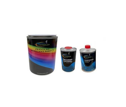 Kit peinture voiture brillant direct Polyuréthane en pot + diluant et durcisseur