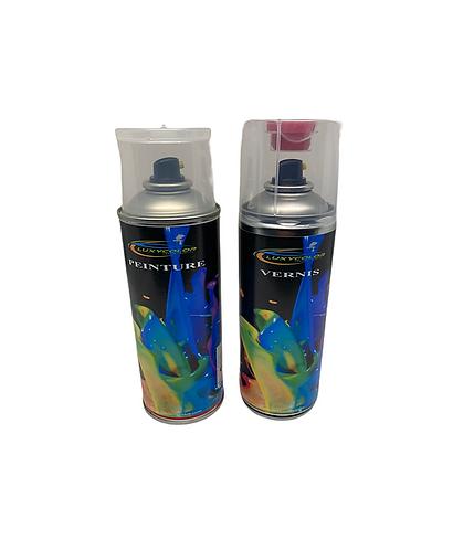bombe de peinture camion hydro + vernis 2K + poignée + plaquette test