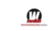 Logo-Wiesendanger.png