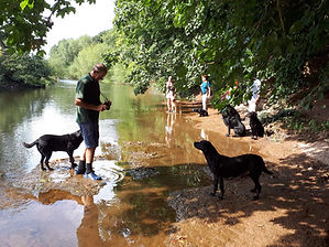 Steve and clients water gundog training