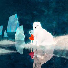 polar_jacket_cover.jpg