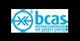BCAS1.png
