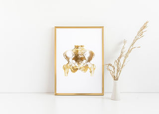 gold foil hip bone in gold picture frame