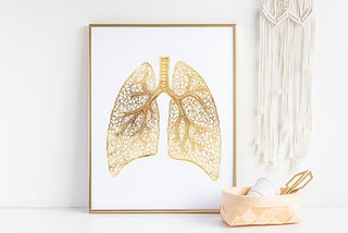gold foil human lung print in gold picture frame