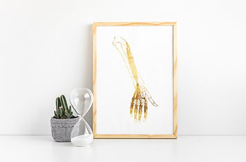 gold foil arm bone print in wooden picture frame
