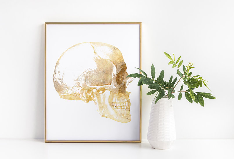 Skull Medical Anatomical Real Foil Print
