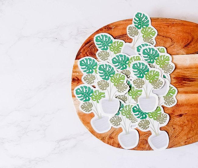Monstera Deliciosa - Handmade Plant Sticker